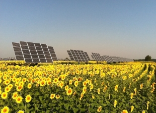 Guest Post: Shared Solar One Step Closer to Reality