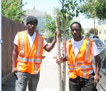 Urban Releaf: How One Community Group Is Saving Urban Neighborhoods and Creating Jobs