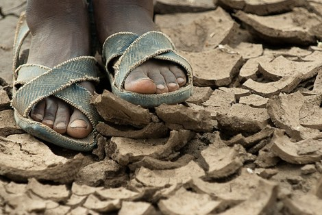 Climate change will be 'devastating' to world's poor, World Bank says