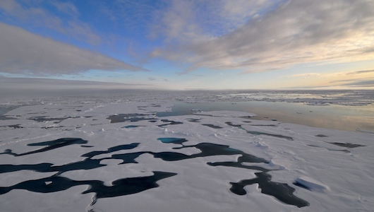 7 Reasons Why Arctic Ice Matters